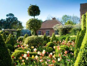 Голландский стиль сада