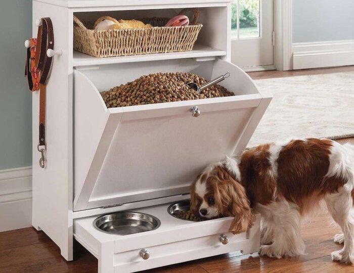 Что нужно приготовить в квартире для собаки
